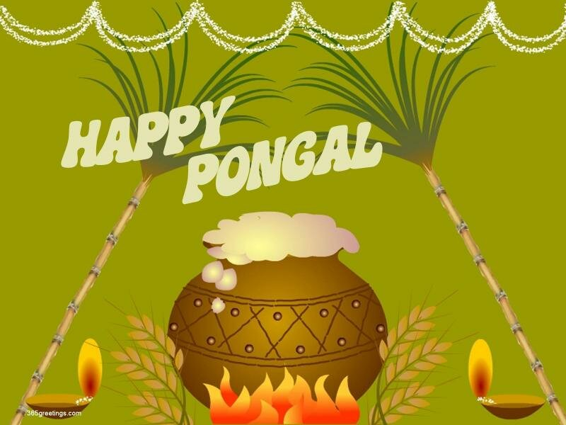 Pongal-2015-Pictures